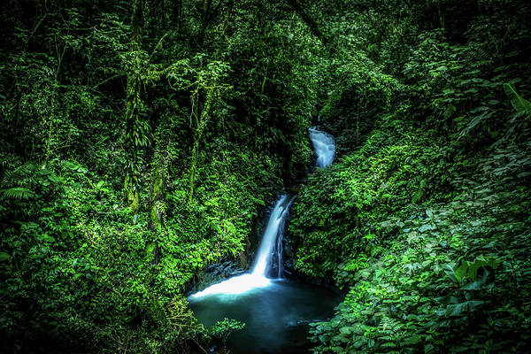 Rain Forest Photograph - Jungle Waterfall by Nicklas Gustafsson