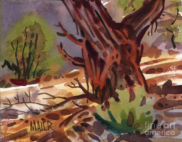 Juniper Wall Art - Painting - Juniper Shade by Donald Maier