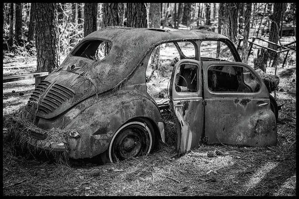 Photograph - Junked Cars by Matthew Pace