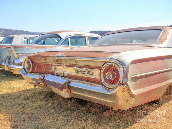Wall Art - Photograph - Junkyard Cars Utah by Edward Fielding