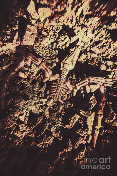 Bone Photograph - Jurassic Grave by Jorgo Photography - Wall Art Gallery