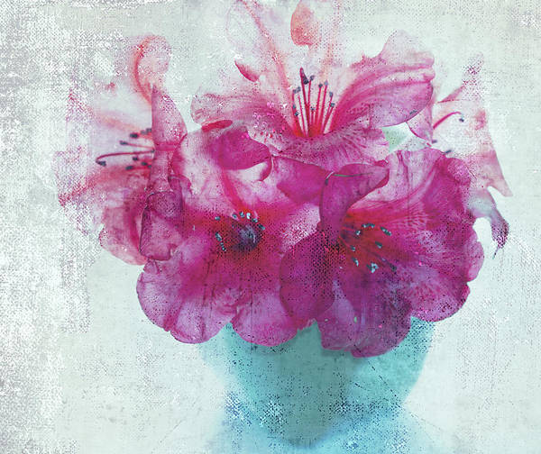 Blue Vase Photograph - Just A Bowl Of Flowers by Rebecca Cozart