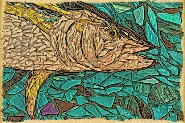 Photograph - Just A Fish by Alice Gipson