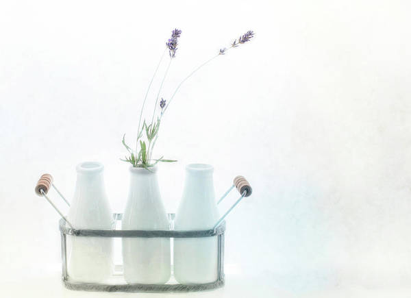 Wall Art - Photograph - Just A Little Lavender by Rebecca Cozart