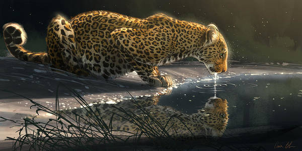 Big Cat Wall Art - Digital Art - Just A Sip by Aaron Blaise