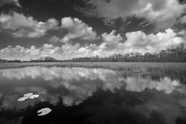 Wall Art - Photograph - Just Breathe In Black And White by Debra and Dave Vanderlaan
