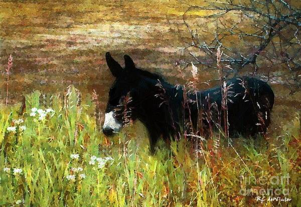 Painting - Just Chillin' by RC DeWinter