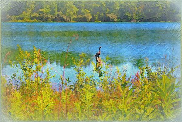Wall Art - Photograph - Just Fishing by Mindy Newman