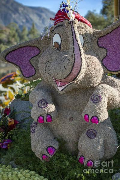 Tournament Of Roses Photograph - Just Imagine Baby Elephant by David Zanzinger