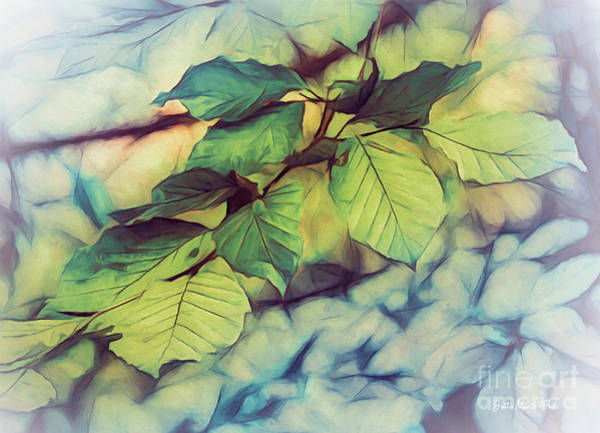 Digital Art - Just Leaves by Jutta Maria Pusl