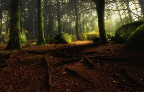 Sintra Photograph - Just Listen by Jorge Maia