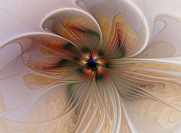 Apophysis Digital Art - Just Peachy by Amanda Moore