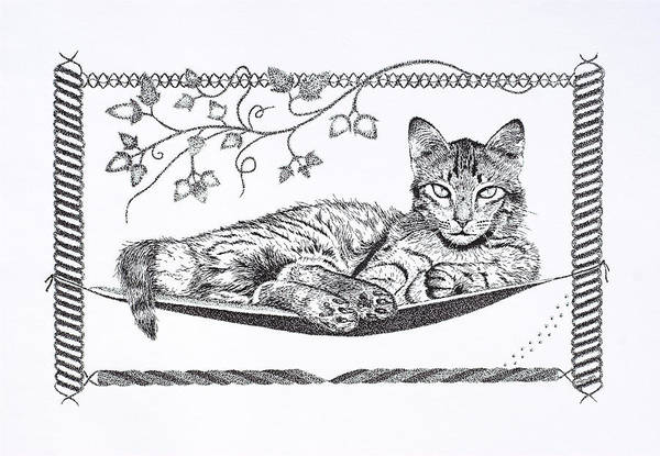 Puss Drawing - Just Relaxing by Hazy Apple