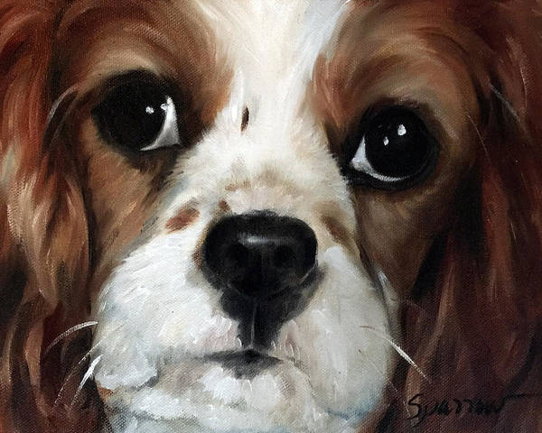 King Charles Spaniel Painting - Just Sweet by Mary Sparrow