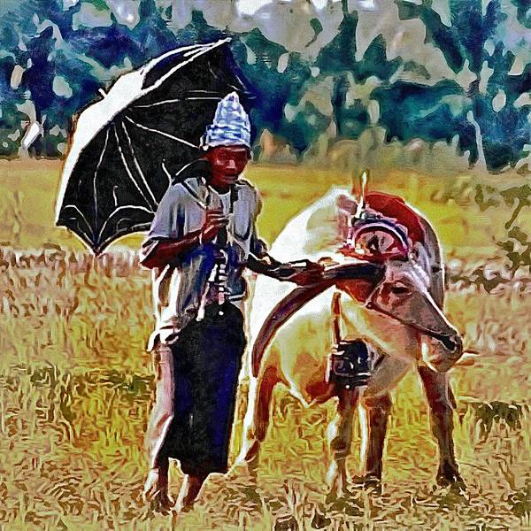 Photograph - Just Walking His Water Buffalo by Dorothy Berry-Lound