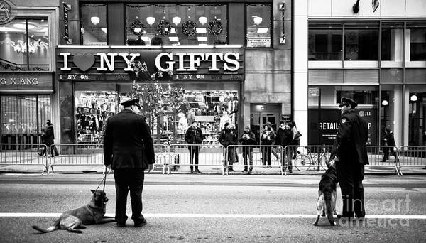 Wall Art - Photograph - K-9 In The City by John Rizzuto