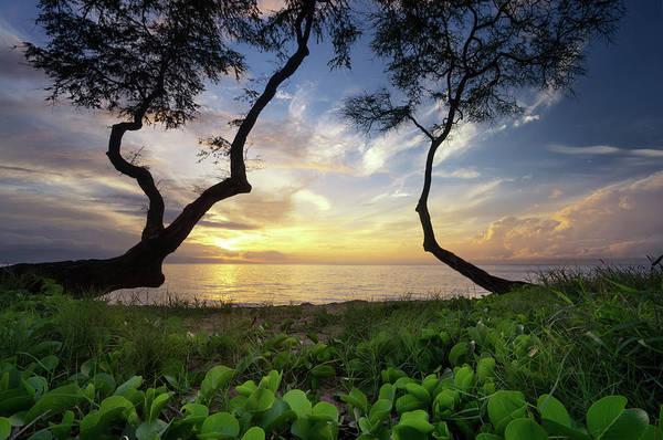 Photograph - Ka'anapali Sunset by Christopher Johnson