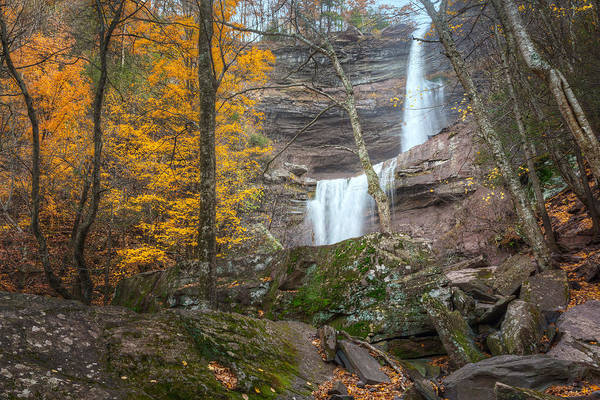 Kaaterskill Clove Photograph - Kaaterskill Falls Thru The Forest by Bill Wakeley