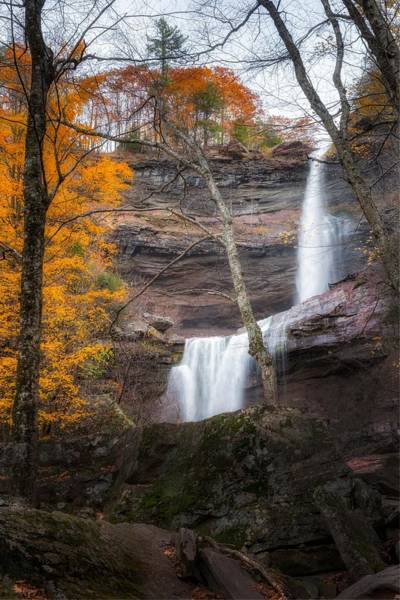 Kaaterskill Clove Photograph - Kaaterskill Falls Thru The Forest Portrait by Bill Wakeley