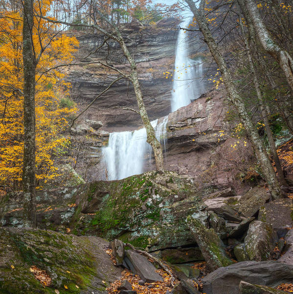 Kaaterskill Clove Photograph - Kaaterskill Falls Thru The Forest Square by Bill Wakeley