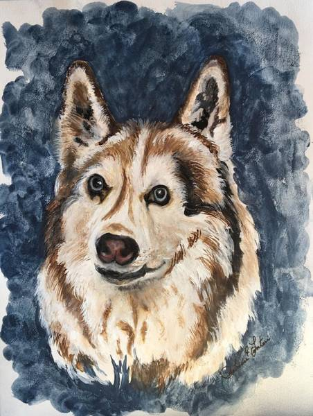Husky Mixed Media - Kaba by Patricia E Lanteri