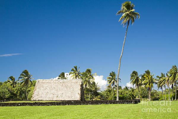 Photograph - Kahanu Garden Hana Maui Hawaii by Sharon Mau