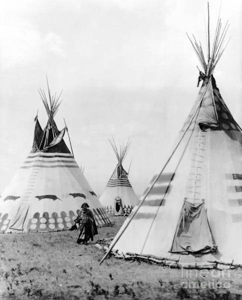 Photograph - Kainai Village, C1913 by Granger