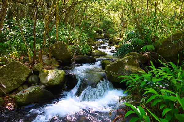 Kalalau Trail Wall Art - Photograph - Kalalau Valley Stream Kauai by Kevin Smith
