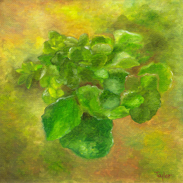 Painting - Kalanchoe by FT McKinstry