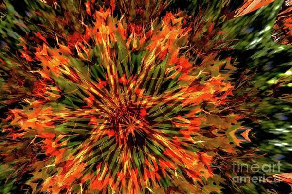 Photograph - Kaleidoscope 1 by Jean Bernard Roussilhe