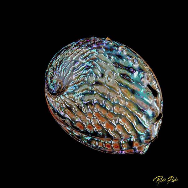 Photograph - Kaleidoscope Abalone by Rikk Flohr