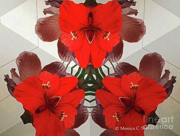 Photograph - Kaleidoscope Mirror Effect M1 by Monica C Stovall