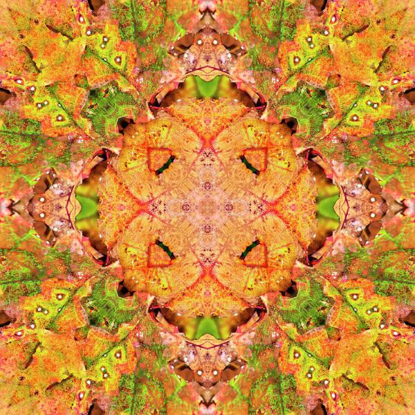 Digital Art - Dotted Leaves by Frans Blok