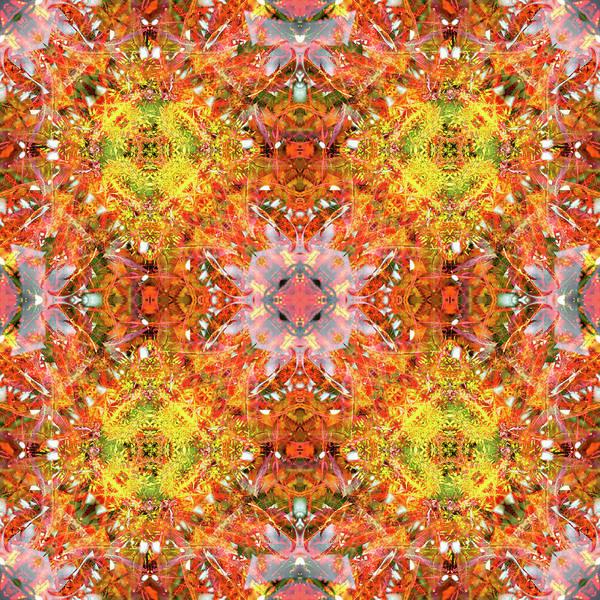 Digital Art - Liquidambar Red by Frans Blok