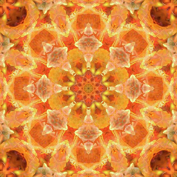 Digital Art - Nuclear Orange by Frans Blok