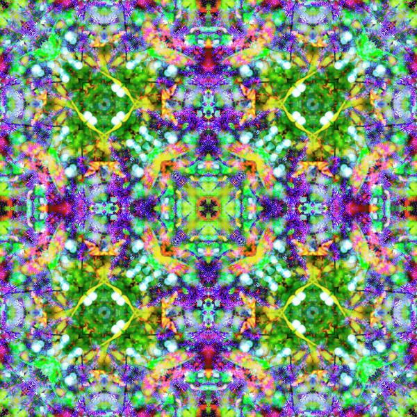 Digital Art - Purple Flowers by Frans Blok