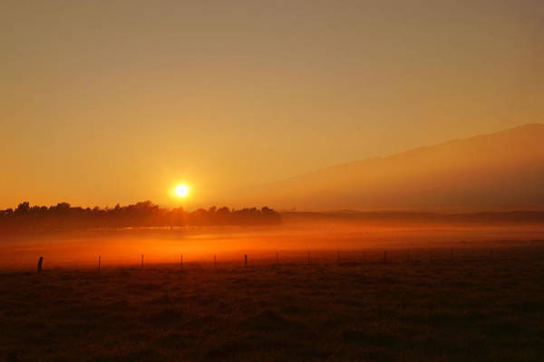Photograph - Kamuela Sunrise by Pamela Walton