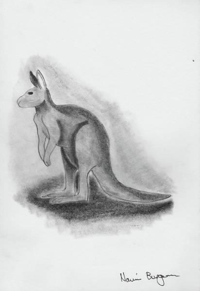 Kangaroo Drawing - Kangaroo Drawing by Naomi Burgess