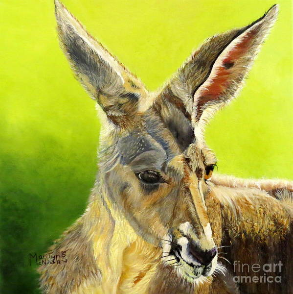Painting - Kangeroo by Marilyn McNish