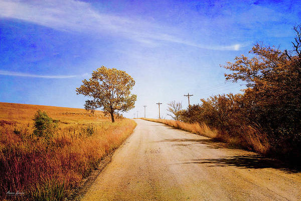 Photograph - Kansas Autumn Rural Road by Anna Louise