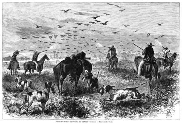 Photograph - Kansas: Bird Hunting, 1867 by Granger