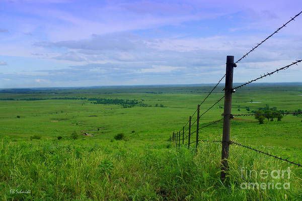 Photograph - Kansas Prairie by E B Schmidt