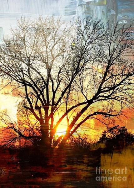 Photograph - Kansas Sunset by Jenny Revitz Soper
