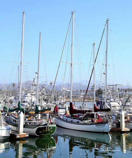Wall Art - Photograph - Karma And Nepenthe Ventura Harbor Village by Barbara Snyder
