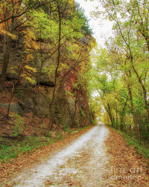 Wall Art - Photograph - Katy Trail Autumn Colors by Kevin Anderson