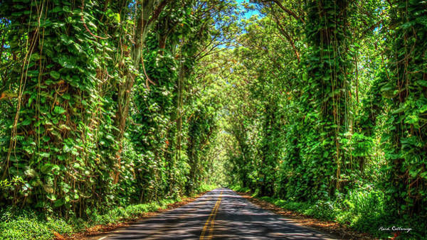 Photograph - Kauai Eucalyptus Tree Tunnel Kauai Hawaii Art by Reid Callaway