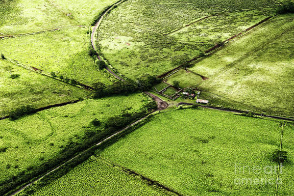 Photograph - Kauai Ranch by Miles Whittingham