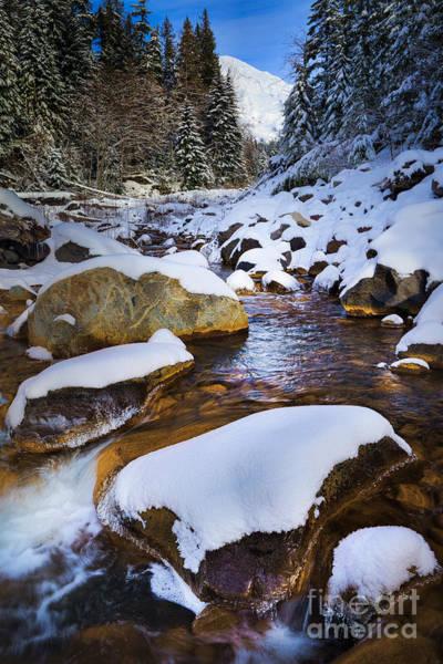 Photograph - Kautz Creek by Inge Johnsson
