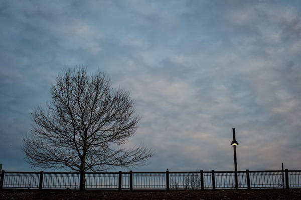 Photograph - Kaw Point Tree And Lamppost by Jeff Phillippi