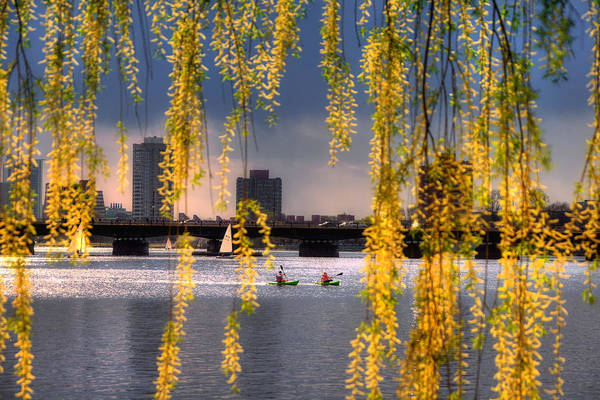 Photograph - Kayaking On The Charles River - Boston by Joann Vitali